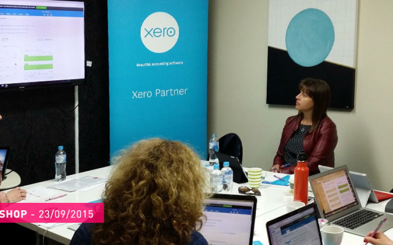 tashly consulting Xero workshop