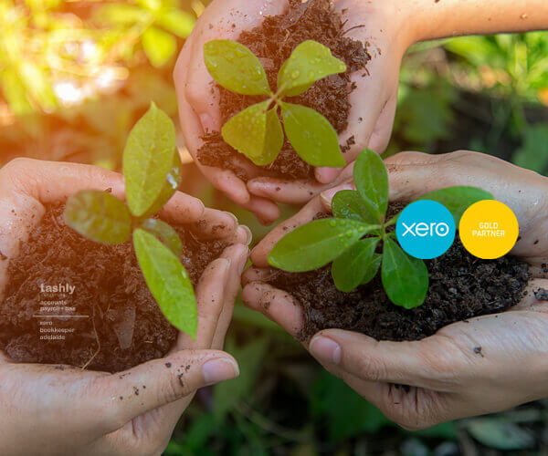 Xero Support and Consulting Adelaide